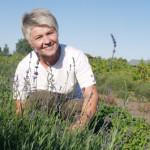 Save realizavusi tarp žolių žolelių, arba Kai įstabusis vaistingųjų augalų pasaulis tampa šeimos verslu