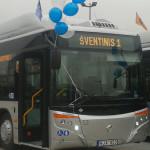 Šiandien Marijampolės miesto viešojo transporto autobusai  keleivius veža nemokamai!