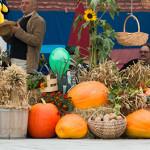 Sūduviai šventėje džiaugiasi gausiu derliumi