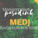 Marijampolieti, pasodink medį Lietuvos kultūros sostinei!