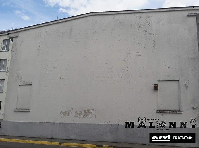 r-stankeviciaus-mokyklos-siena