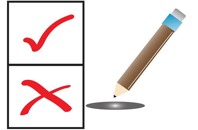 Vasario 27–ąją prasideda išankstinis balsavimas savivaldybių tarybų rinkimuose
