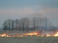 Būkite atsargūs su ugnimi gamtoje!