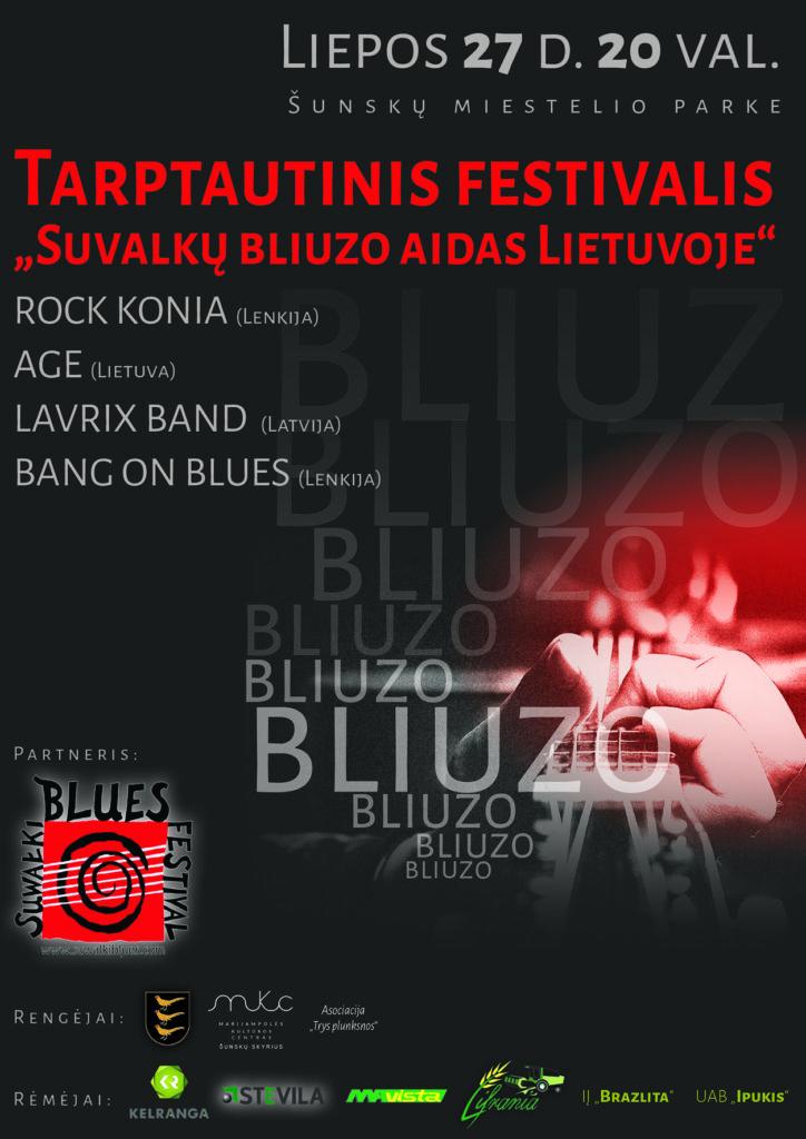 Tarptautinis festivalis @ Šunskai