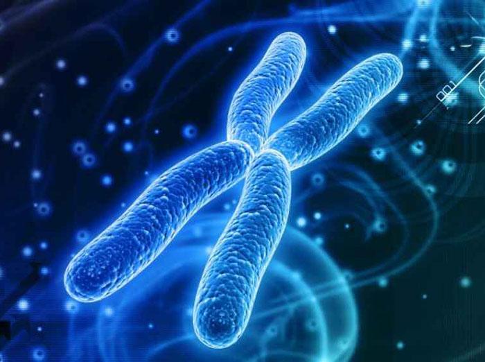 Norite pristabdyti senėjimą? Susipažinkite su savo telomerais