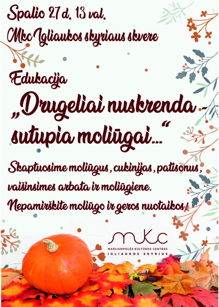 Edukacija @ Igliauka (Marijampolės sav.)