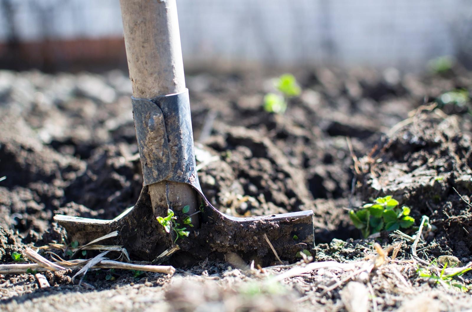 Ką kiekvienas ūkininkas turi žinoti apie paviršiaus aktyvias (PAM) medžiagas