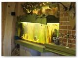 Akvariumas, džiugina ne tik šeimininkus, bet ir svečius