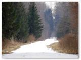 Žiemą bent keliai balti.