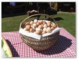 Tradicinė Sekminių kiaušinienė buvo kepama iš 500 kiaušinių!