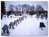 Jiezno kapinėse palaidoti pirmieji už laisvę žuvę Vilkaviškio krašto savanoriai. Bendras kapinių vaizdas.