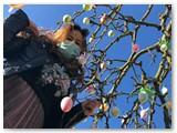 Vaida Giraitytė – šio Velykų medžio atsiradimo Skaisčiūnuose iniciatorė, jo puošimu namiškius užkrėtusi dar 2009 metais.